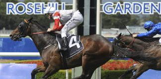 Race reviews rosehill