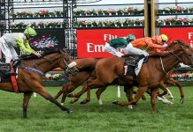 flemington winning post