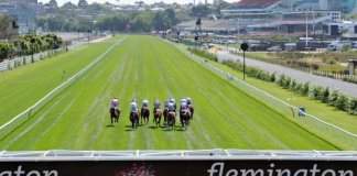 Flemington straight