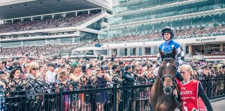 protectionist pre melb cup