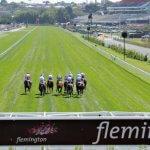 Horse racing ratings