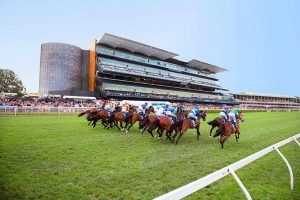market prices horse racing tips