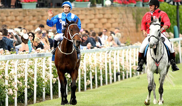 Cox Plate Moonee Valley Winx