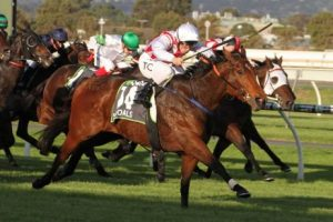group 1 darley goodwood horse racing tips
