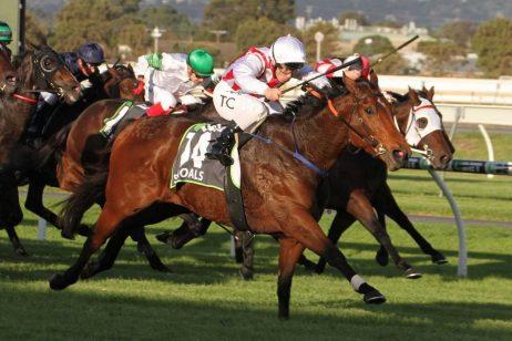 group 1 darley goodwood horse racing tips