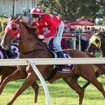 spring racing tips