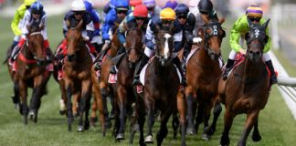 Melbourne Cup Spring racing tips