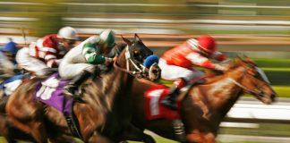 racing tips saver betting model