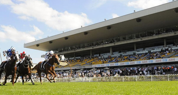 Rosehill Quaddie tips