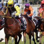 footy finals racing tips footy tips