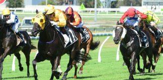 Doomben Sunshine Coast Ipswich Eagle Farm Queensland racing