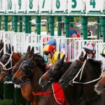 Flemington Quaddie tips