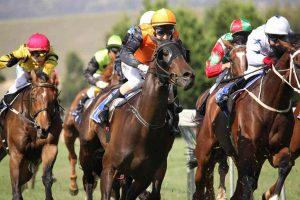 runners to watch racing tips Caulfield