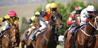 runners to watch racing tips Caulfield