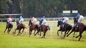 runners to watch racing tips