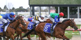Group 1 Underwood Stakes Caulfield Spring racing