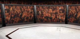 UFC 229 Conor McGregor Khabib Nurmagomedov