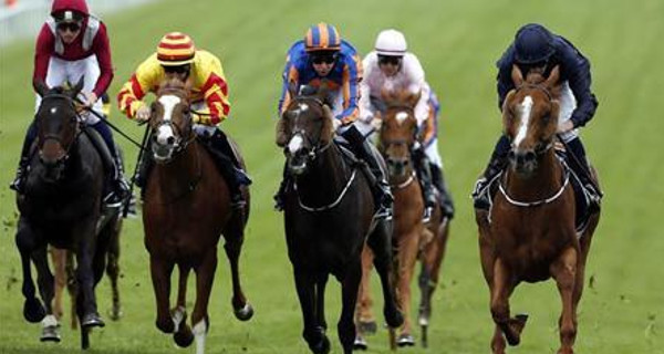 successful analyst racing tips