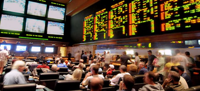 profit on turnover punting success