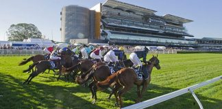 the everest spring racing