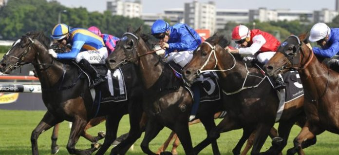 Expressway Stakes Preview racing tips