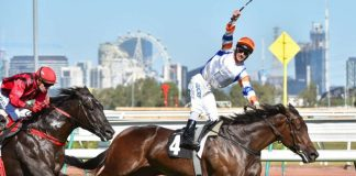 Group 1 Australian Guineas preview