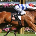 Group 1 Black Caviar Lightning Stakes preview racing tips