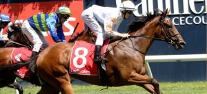 Group 1 Blue Diamond Stakes preview racing tips