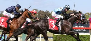 Group 3 CS Hayes Stakes preview racing tips