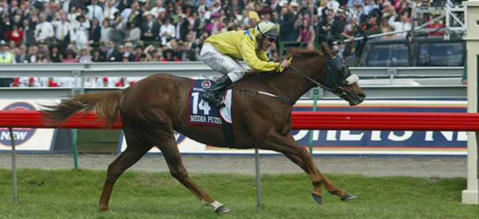 Betting 360 Damien Oliver