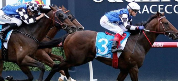 Group 1 Futurity Stakes preview racing tips