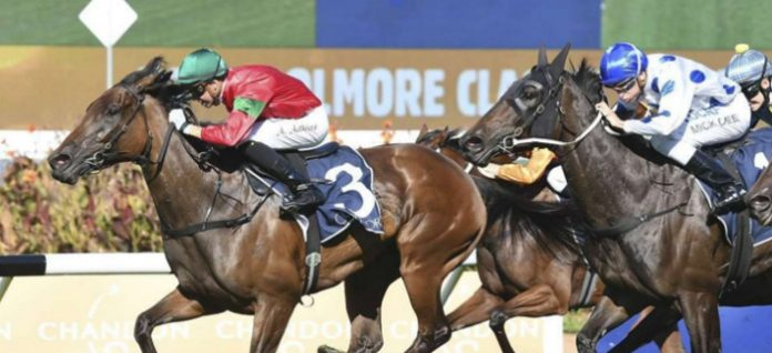 Group 1 Coolmore Classic preview