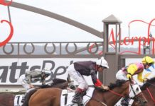 SA racing tips Nadia Horne