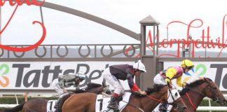 SA racing tips Nadia Horne