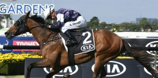 Group 1 Tancred Stakes preview