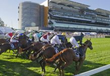 Group 1 Sydney Cup preview