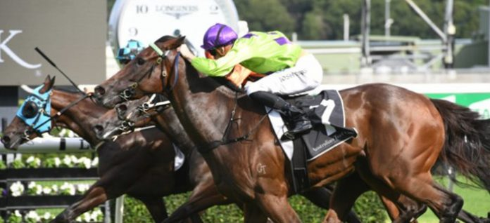 Group 1 Doncaster Mile preview