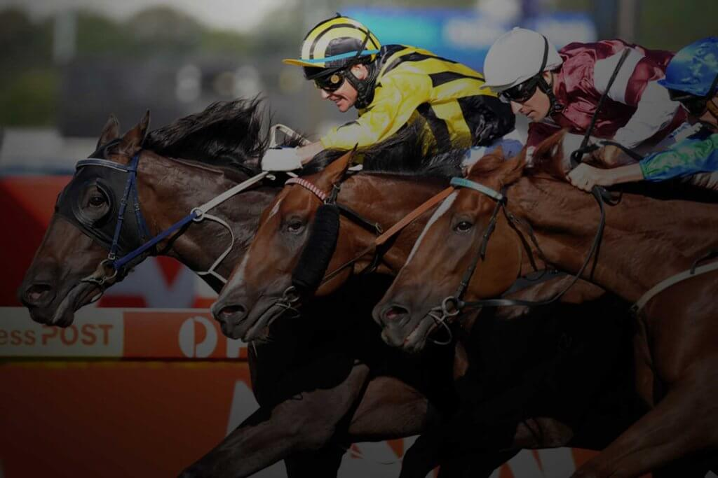 NSW Racing champion bets